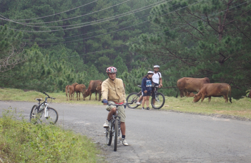 bike-dalat-countryside-4
